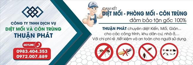 Diệt côn trùng Thuận Phát