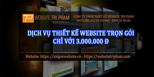 Công ty TNHH MTV Website Trí Phạm