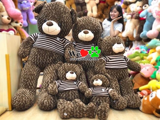 Sở thú gấu bông