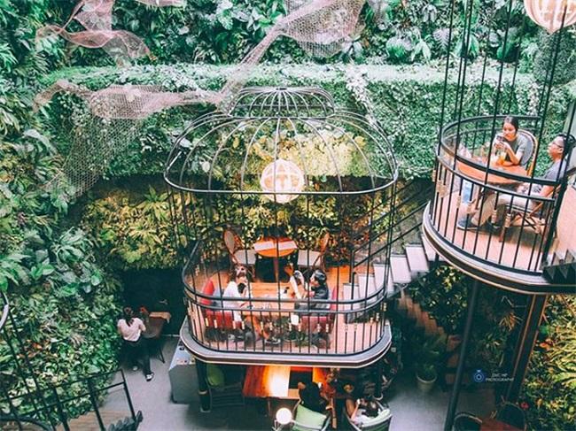 Terrace cafe là quán cà phê lồng chim